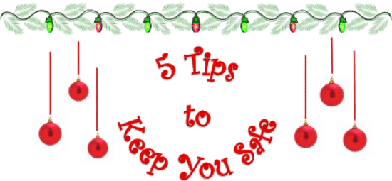 Garage Door Safety for the holidays 5 tips